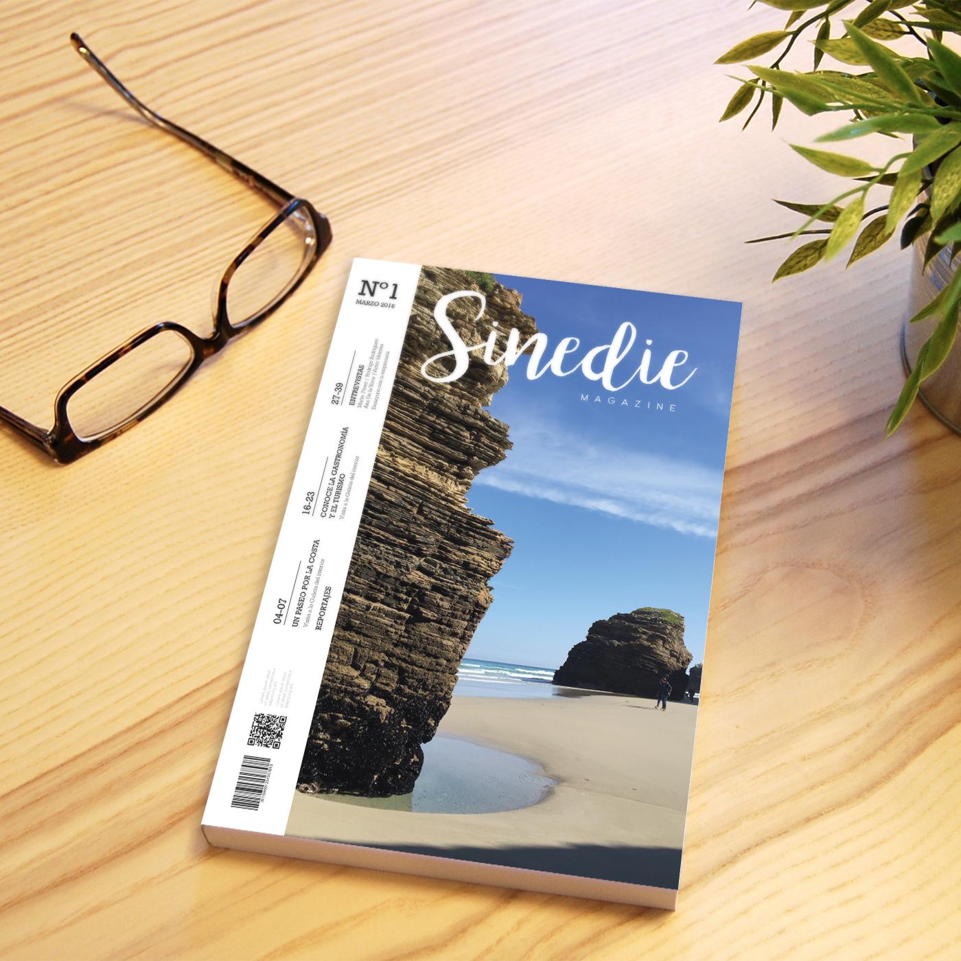 Revista Sinedie